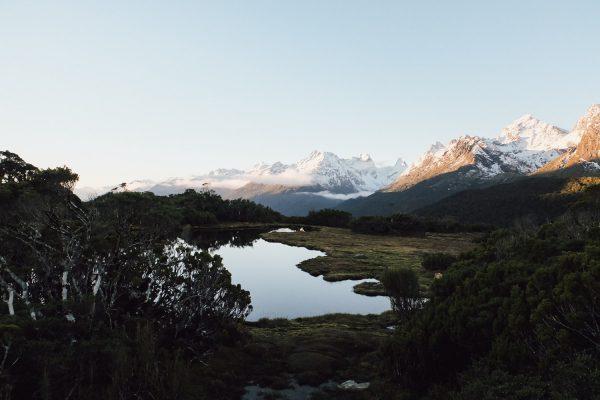 New Zealand - Alexandra Wallace